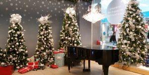Limo for Christmas Light Tour